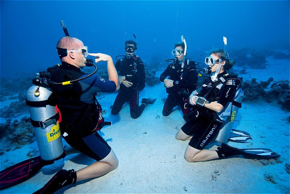 Open Water Diver Pro Dive Magnetic Island