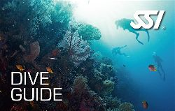 472573_Dive Guide (Small)-opt