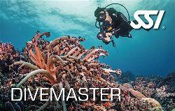 472574_Divemaster (Small)-opt