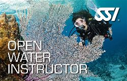 472580_Open Water Instructor (Small)-opt