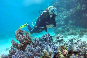 Great Barrier Reef Dive Trip